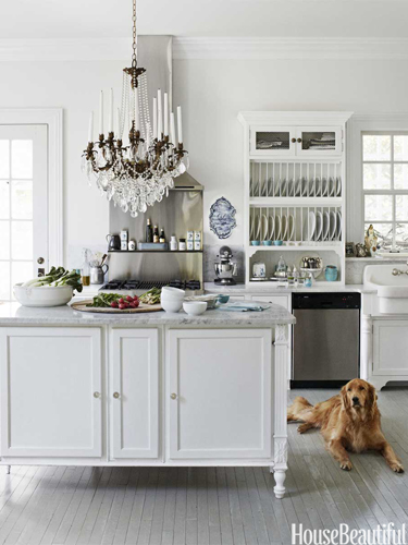 Hbx-white-kitchen-with-dog-0512-lgn